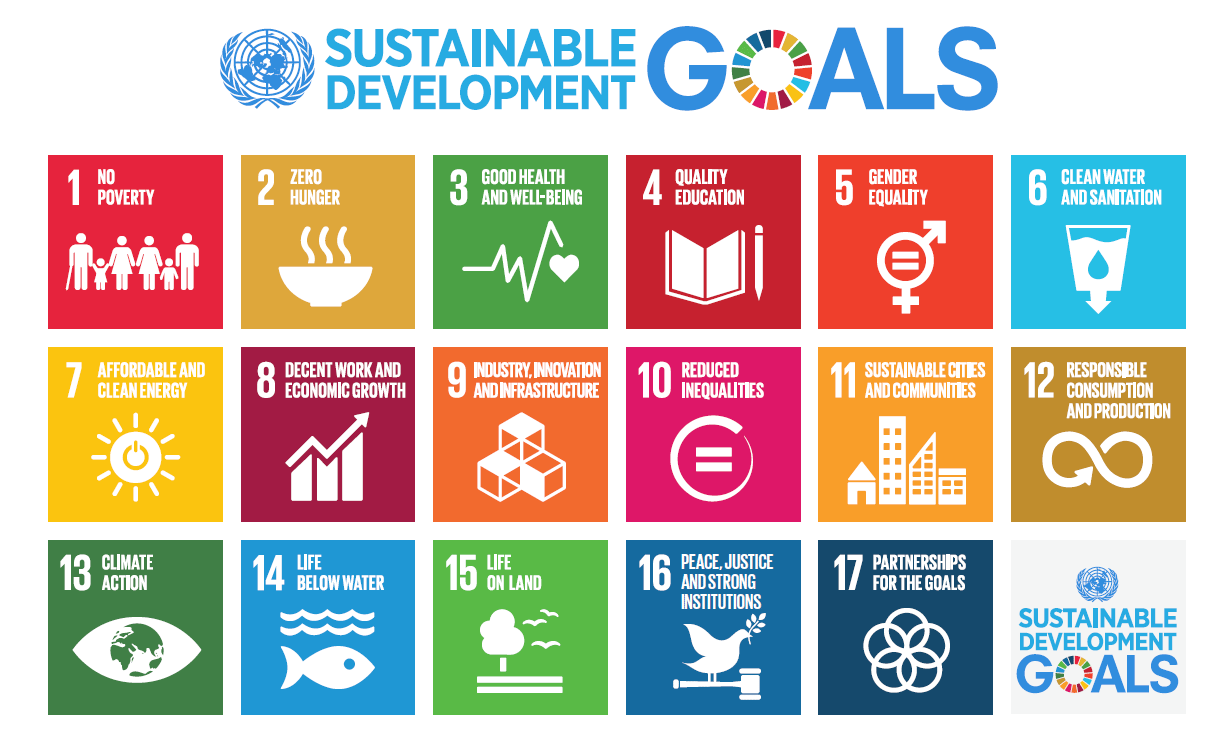 UN Sustainable Development Goals globe