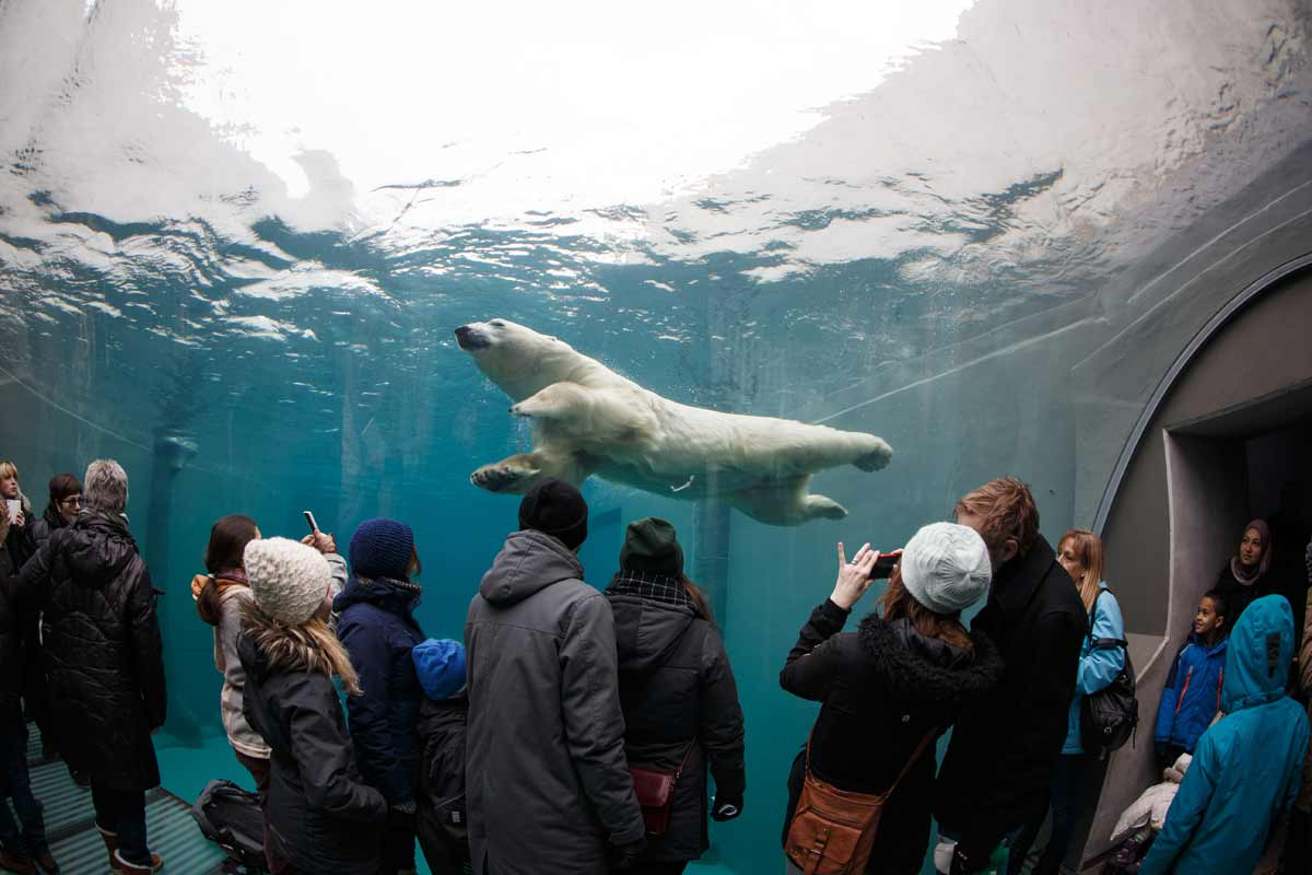 zoo frederiksberg åbningstider